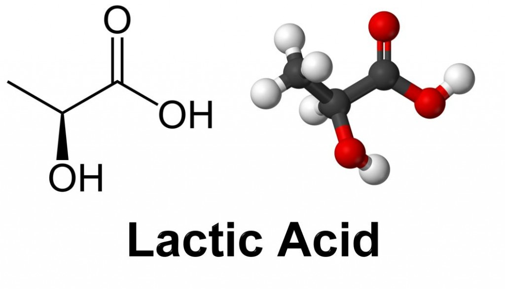 Lactic acid | Brother's In Blood